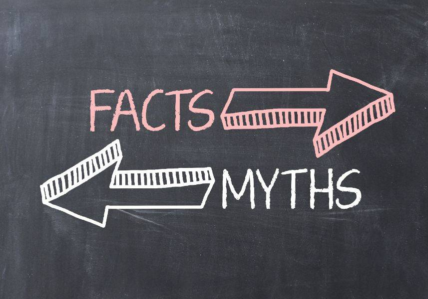 Myths about Japan Busted!