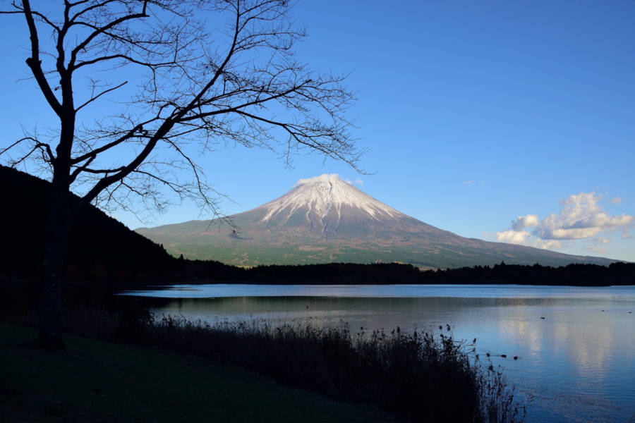 Japan's most awaited climbing season opens - Mount Fuji trails are waiting for you
